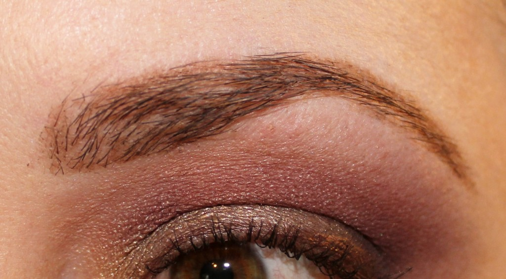 Sleek Eyebrow Stylist Applied